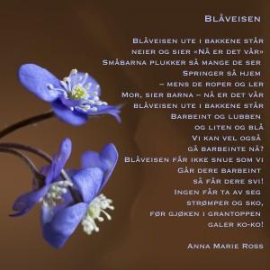 W_3blåveis-m-dikt_2160