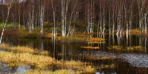 2.Autumn_